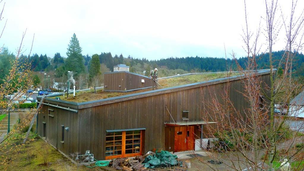 University of Oregon, Rooftop Garden